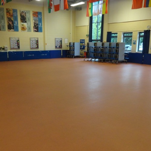 Large Main Hall at Lea Valley School